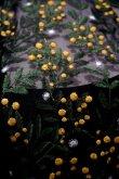 画像6: LOKITHO (ロキト) EMBROIDERY FLARED DRESS ミモザ 刺繍ワンピース  yellow (6)
